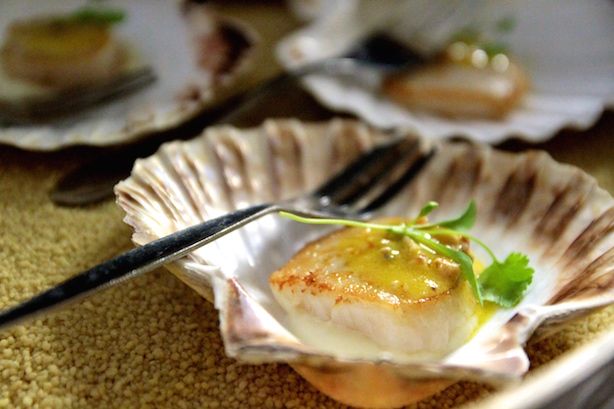 Scallop in a shell